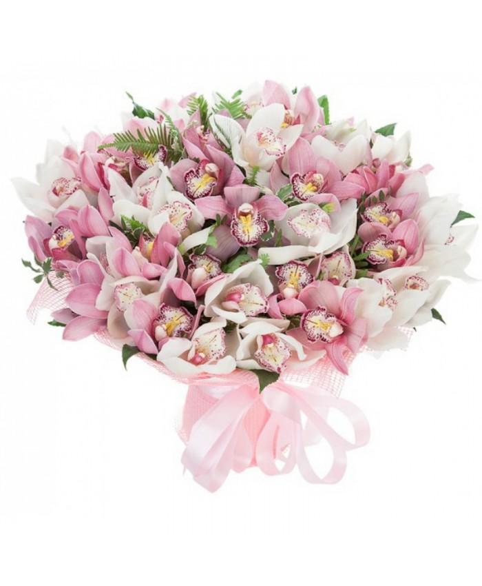 Букет из 37 орхидей